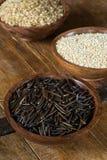 Arroz salvaje, quinoa y arroz moreno Imágenes de archivo libres de regalías