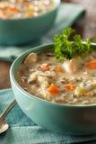 Arroz salvaje y sopa de pollo hechos en casa Fotografía de archivo libre de regalías