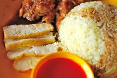 Arroz vegetariano del pollo Fotografía de archivo