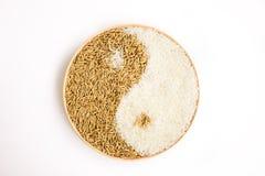 Arroz y arroz en el plante Imagenes de archivo