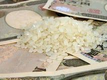 Arroz y dinero Imágenes de archivo libres de regalías