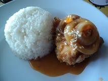 arroz y salsa del pollo de la cebolla imagen de archivo libre de regalías