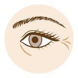 Arruga del ojo - parte del cuerpo, vista delantera libre illustration