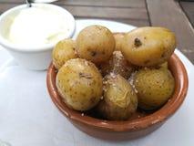 Arrugadas pattatas μπαμπάδων Ισπανικά tapas με τις αλατισμένες πατάτες και την άσπρη σάλτσα aioli στοκ φωτογραφίες με δικαίωμα ελεύθερης χρήσης