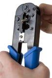 Arrugador 6 del cable de la red Imagen de archivo libre de regalías
