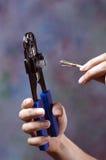 Arrugador y cable cat5 Imagen de archivo libre de regalías