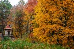 Arruinada velha e esvazia o castelo no meio da floresta do outono Fotos de Stock