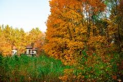 Arruinada velha e esvazia o castelo no meio da floresta do outono Imagens de Stock