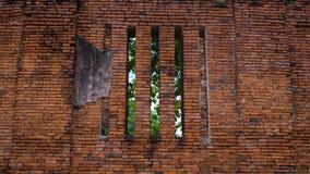 Arruine a parede de tijolo com janela e a árvore atrás no templo antigo, A Imagem de Stock Royalty Free