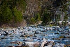 Arshan на горах Sayan в Buriatya, Сибире - России Стоковые Фото