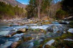 Arshan на горах Sayan в Buriatya, Сибире - России Стоковое Изображение