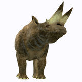 Arsinoitherium Mammal on White. Arsinoitherium was a herbivorous rhinoceros-like mammal that lived in Africa in the Early Oligocene Period Royalty Free Stock Photography