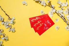 Artículos chinos de la decoración del Año Nuevo en fondo amarillo Foto de archivo
