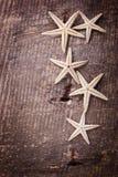 Artículos marinos en fondo de madera Fotografía de archivo