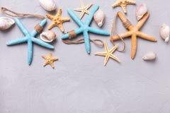 Artículos marinos en fondo tetured gris de la pizarra Imágenes de archivo libres de regalías