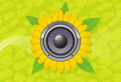 Art; abstract; audio; gerber; speaker. Sunflower with speaker on green background Royalty Free Stock Image
