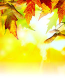 Art abstract autumn background Royalty Free Stock Photos