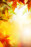Art abstract autumn background Stock Image