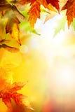 Art abstract autumn background Stock Image