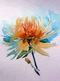 Watercolor art background abstract dalicate flower orange dahlia wash blurred single. Art abstract background executed watercolor. flower dahlia single textured Royalty Free Stock Photos