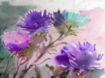 Watercolor art background colorful soft lidht violet aster flower bouquet still life painting stock illustration