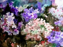 Watercolor art background colorful summer flower bouquet violet white  phlox. Art abstract background executed with watercolors .   delicate  phlox bright wet Royalty Free Stock Image