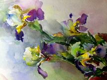 Watercolor art abstract background beautiful floral iris exotic flowers modern textured wet wash blurred fantasy. Art abstract background extruded in watercolor Royalty Free Illustration