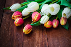 Art abstract background spring tulips wooden design Stock Photo