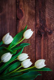 Art abstract background spring tulips wooden design Stock Photography