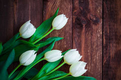 Art abstract background spring tulips wooden design Stock Image