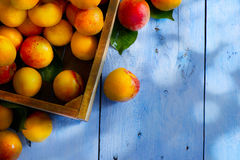 Art abstract market background fruits on a wooden background Stock Photography