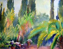 Art abstract paint. Mediterranean trees painted by watercolor Stock Photography