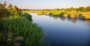 Art auf dem Fluss mit grüner Küste Stockbilder