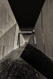Art Autumn fino blanco y negro en Canberra Fotos de archivo libres de regalías