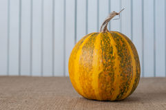Art autumn Pumpkin thanksgiving background. Retro Stock Image