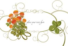 Art background. Vector drawing of the red clover flowers and lucky-4-leaf clover Royalty Free Stock Photography