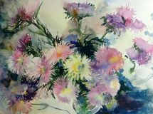 Watercolor art  background delicate  colorful nature botanical fresh romantic  flowers asters bouquet. Art background abstract extruded in watercolor technical Stock Image