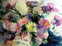 Watercolor art  background  colorful nature botanical fresh romantic  flowers asters bouquet. Art background abstract extruded in watercolor technical. colorful Royalty Free Stock Photography