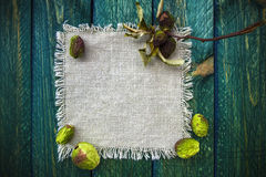 Art background dried fruit vintage quince Stock Photos