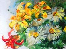 Watercolor art background colorful nature summer yellow red white flower chamomile lilyes bouquet blossom branch spring garden Stock Images