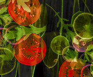 Art background from sliced vegetable Stock Image