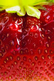 Art background summer fresh strawberry Royalty Free Stock Photography