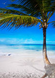 Art beautiful  caribbean tropical sea beach Stock Photography