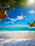 Art beautiful Caribbean tropical sea beach Royalty Free Stock Photo