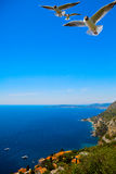 Art beautiful landscape of summer sea. Cote d'Azur Royalty Free Stock Images