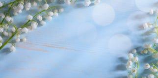 Art Beautiful may Lily Flowers Border Stock Photo