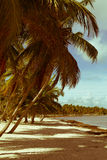 Art  beautiful retro seaside view Stock Photo