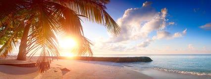 Art Beautiful soluppgång över den tropiska stranden Arkivbilder