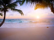 Art Beautiful sunrise over the tropical beach Stock Images