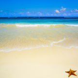 Art  beautiful untouched tropical sea beach Royalty Free Stock Photography